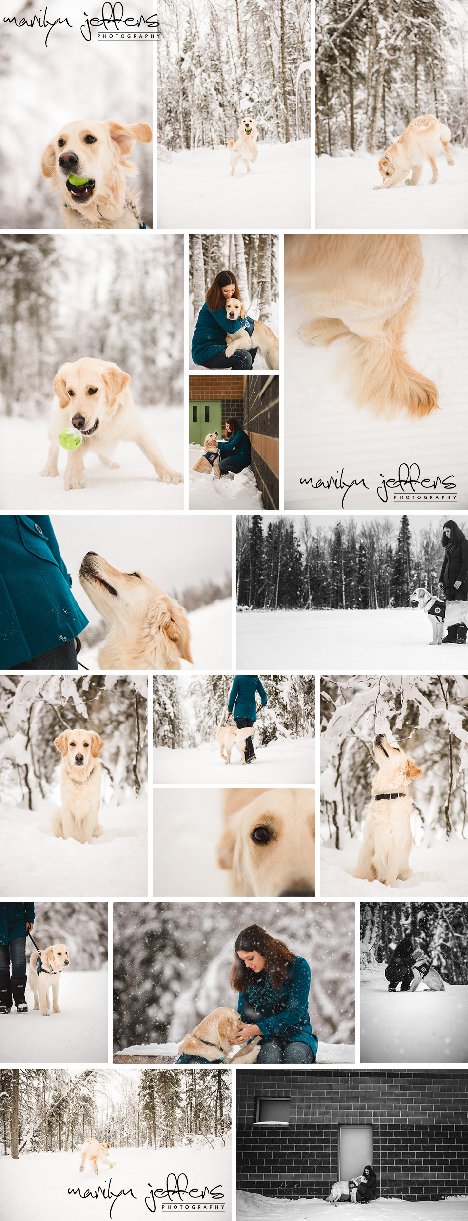 Redick_Dog_Winter_Service_Photographer_EagleRiver
